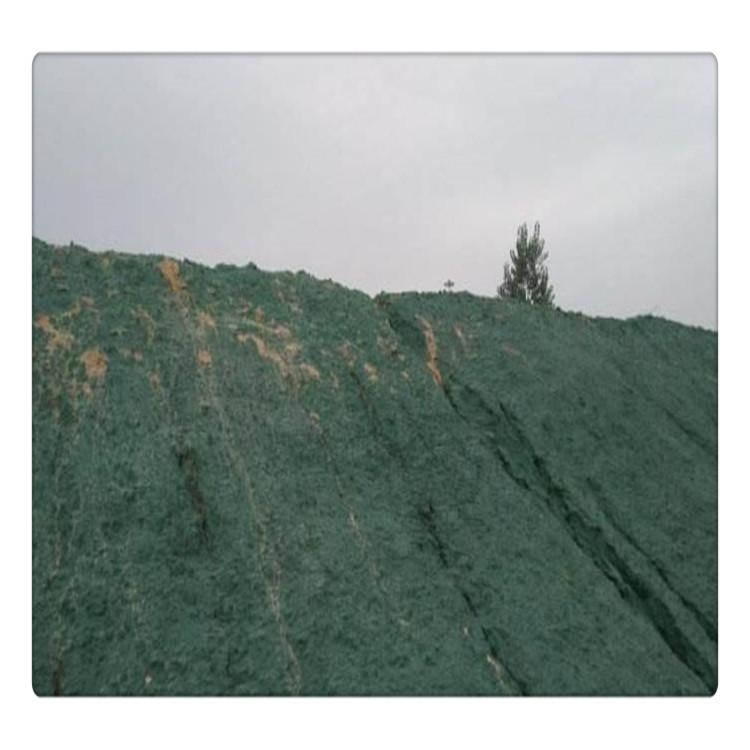 厂家铁路运输抑尘剂 煤炭抑尘剂封尘剂 速溶抑尘剂环保道路抑尘示例图4