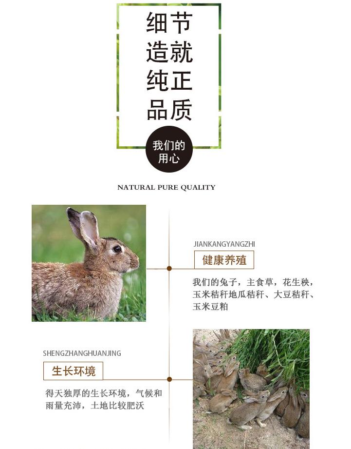 杂交野兔厂家直供 生态比利时杂交野兔厂家 供应批发杂交种兔示例图3