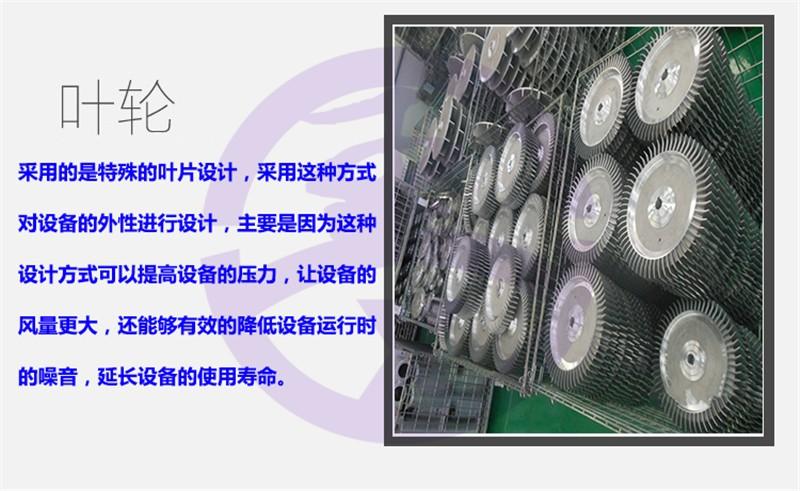 廠家直銷防爆高壓風機 防爆漩渦氣泵 變頻防爆真空泵 FB系列防爆鼓風機5.5kw耐高溫防爆鼓風機11kw油氣輸送防爆風機示例圖8
