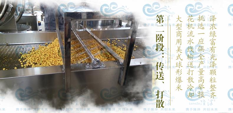 爆裂玉米球形爆米花机 隆泽厂家直销 爆米花生产线 大型爆米花机示例图4