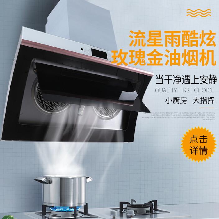 货源供应兴隆玫瑰金油烟机 平罩型家用吸油烟机 厨房排油烟机图片