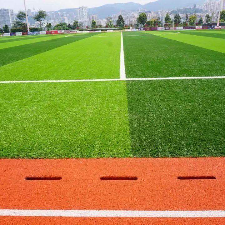 供應幼兒園專用加密仿真草坪 足球場草坪 樓頂綠化草坪