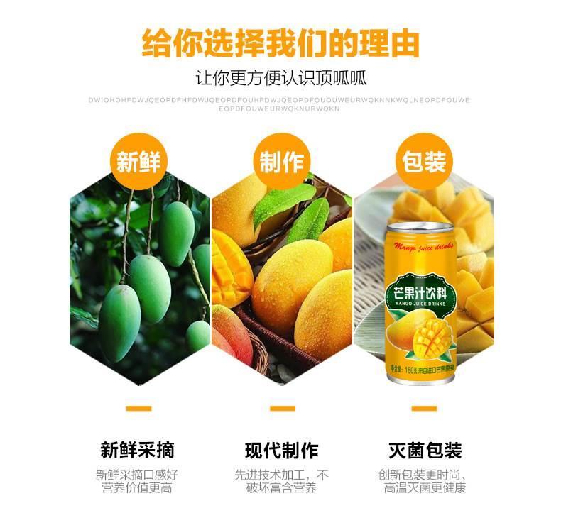 广东中山芒果汁饮料180ml厂家直销示例图5