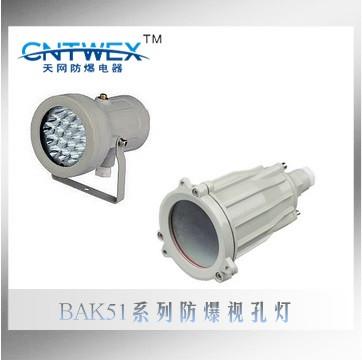 BAK51(ABSG)系列防爆视孔灯