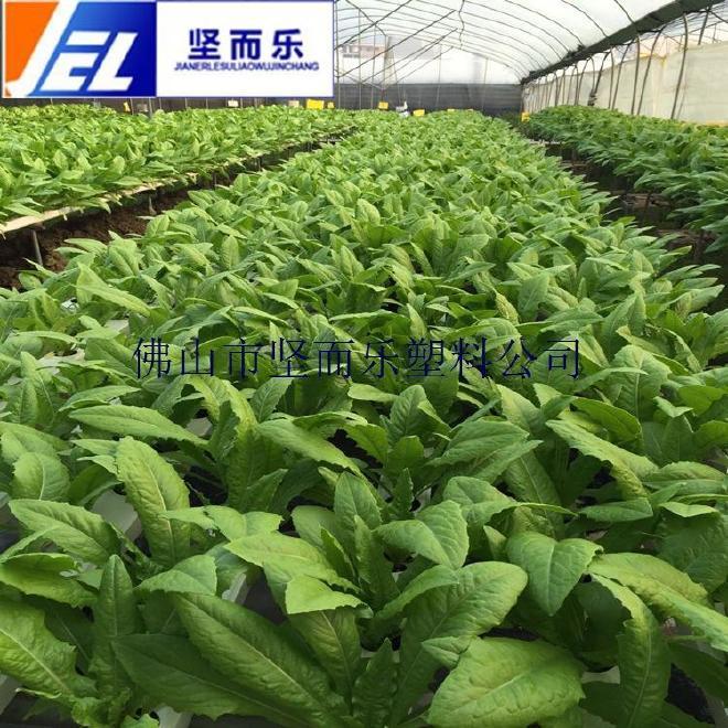 无土种植 水培蔬菜pvc管 草莓种植管