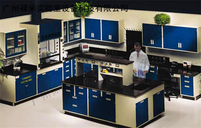 广东广州全钢实验室家具 实验台 边台涤池 角柜生产厂家_通风柜