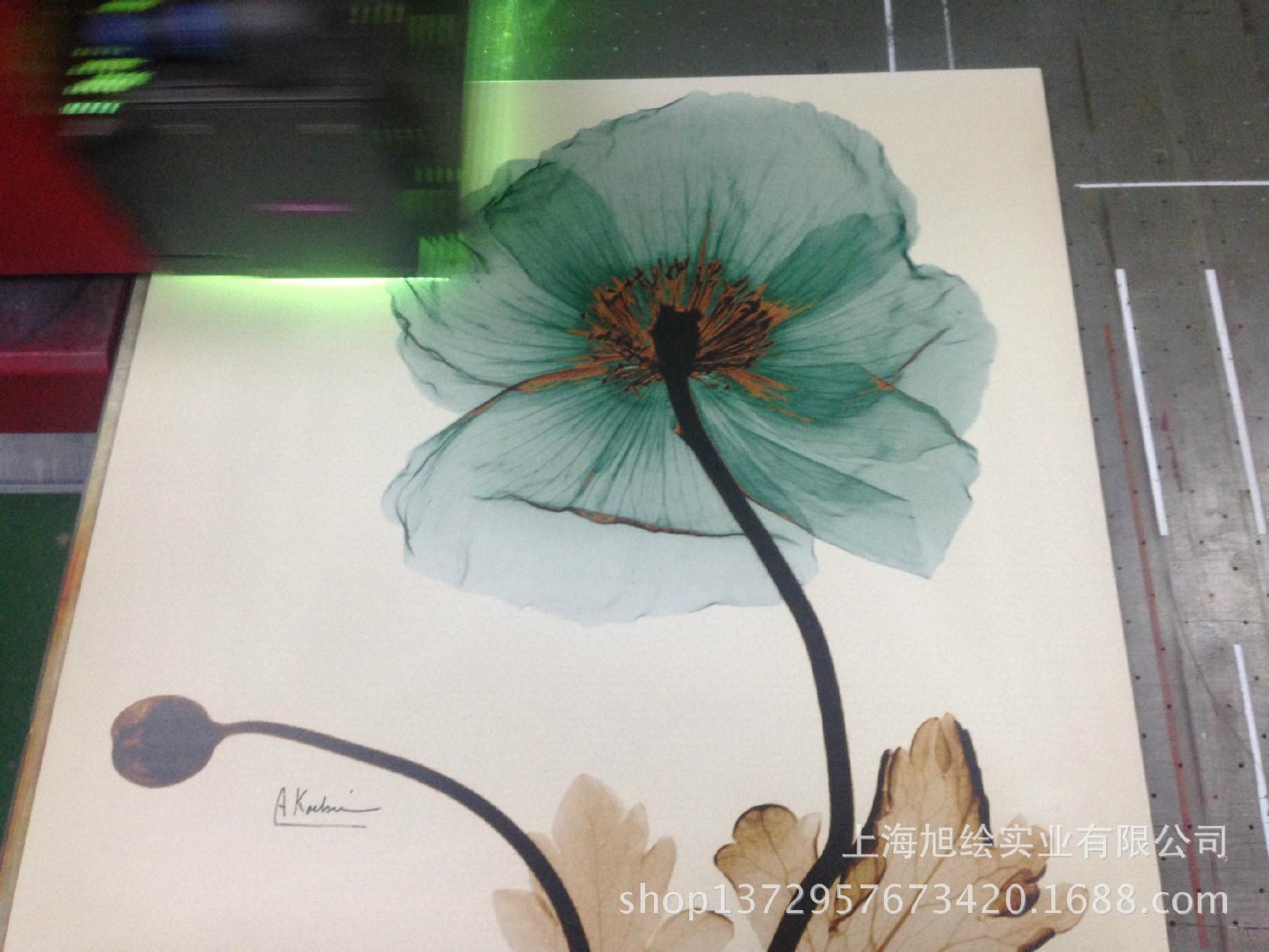 瓷砖画面喷绘 UV平板打印 瓷砖地板天花板画面喷绘打印 高清品质图片