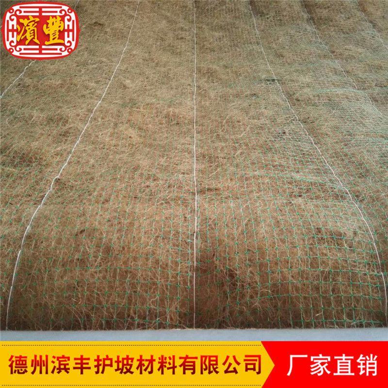 滨丰生态毯 环保护坡 荒山治理 椰丝草毯 厂家直销示例图6