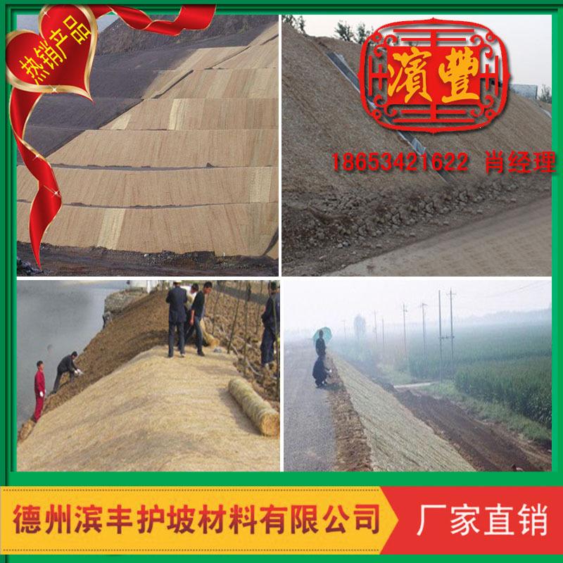滨丰生态毯 环保护坡 荒山治理 椰丝草毯 厂家直销示例图13