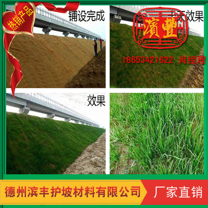 滨丰生态毯 环保护坡 荒山治理 椰丝草毯 厂家直销示例图14