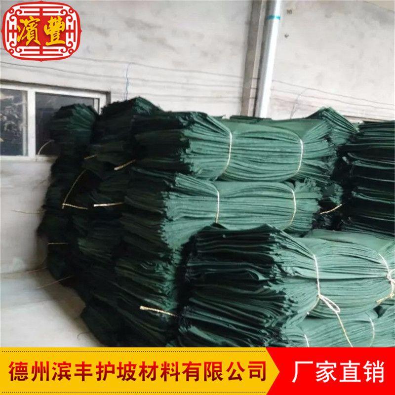 滨丰护坡 生态袋厂家直销护坡生态袋、绿色生态袋、植生袋、植草毯、植被垫示例图12