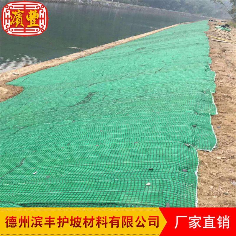 多层加强筋植被垫 滨丰护坡 植草毯环保护坡植被垫示例图6