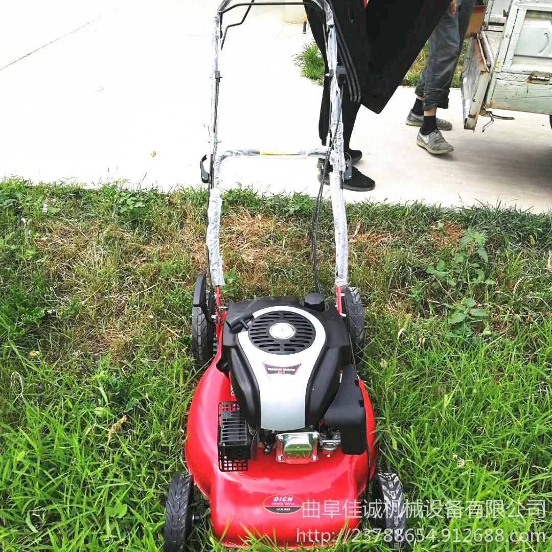 輕便型手推式草坪修剪機  草坪修剪機球場專用草坪機草坪機   公園綠地草坪修剪機-圖片