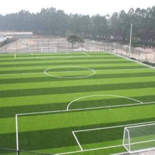 濟南足球場草坪,塑料草坪,幼兒園草坪,圍擋草坪,足球場人造草坪圖片