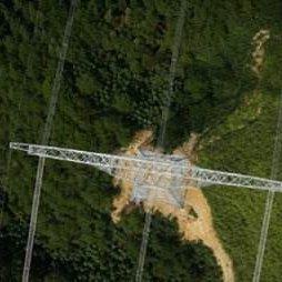 森林智能巡护办理体系