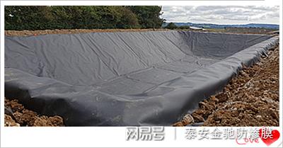 上海垃圾填埋场用高密度聚乙烯HDPE0.75mm防渗土工膜价格示例图2