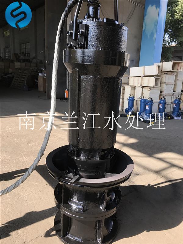 井筒式潜水轴流泵700ZQB-70D示例图2