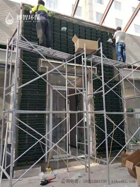 模块式种植盒 垂直绿化 立体绿化 生态植物墙,智能植物墙,植物墙种植盒,博智环保示例图2
