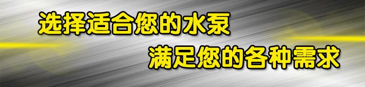 奧泉廠家生產ZJ礦用渣漿泵 無堵塞排污泵 離心式渣漿泵 柴油機離心泵 機械密封浮選泵示例圖1