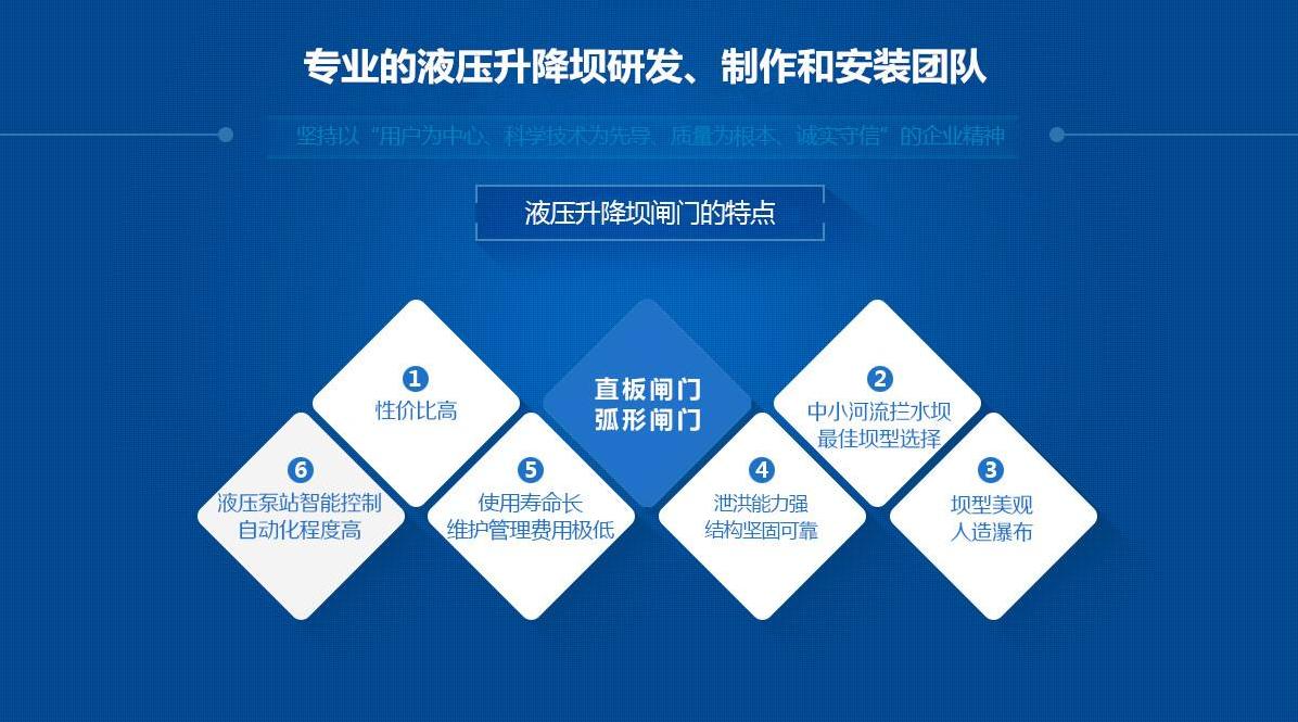大型钢坝定制商 定制优质液压钢坝 液压钢坝闸门制造厂家示例图1