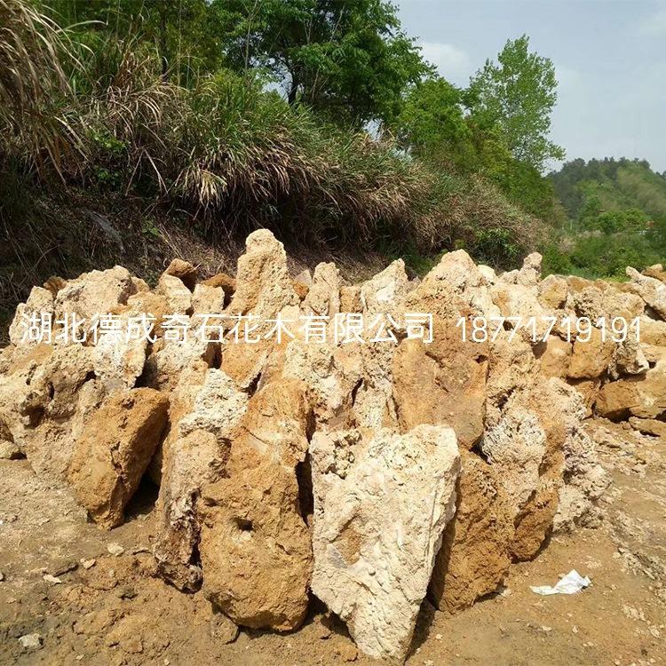 吸水石批发吸水石价格通山吸水石假山吸水石开采吸水石产地示例图4