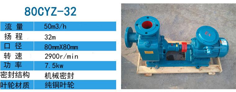 100CYZ-75输送燃油泵用于武汉造船厂-远东泵业示例图2
