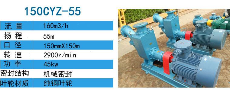 100CYZ-75输送燃油泵用于武汉造船厂-远东泵业示例图4