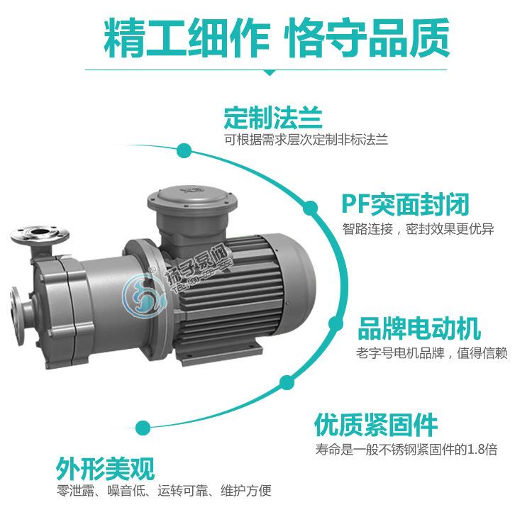 厂家热销 CQ系列耐腐蚀磁力泵 65CQ-32 不锈钢磁力泵 304材质示例图9