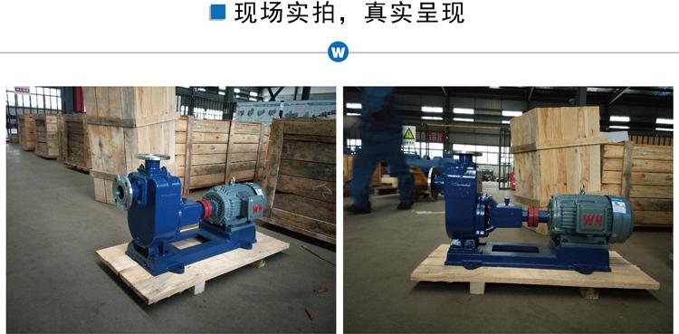 ZX不銹鋼自吸泵 耐腐蝕自吸離心泵 臥式污水自吸泵 清水自吸泵廠家示例圖3