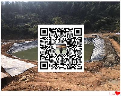 贺州市黑膜沼气池防渗膜厂家定做报价  黑膜沼气池施工公司示例图6