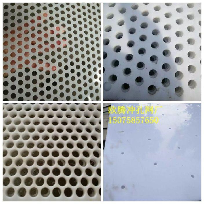 塑料沖孔網發布圖1.jpg
