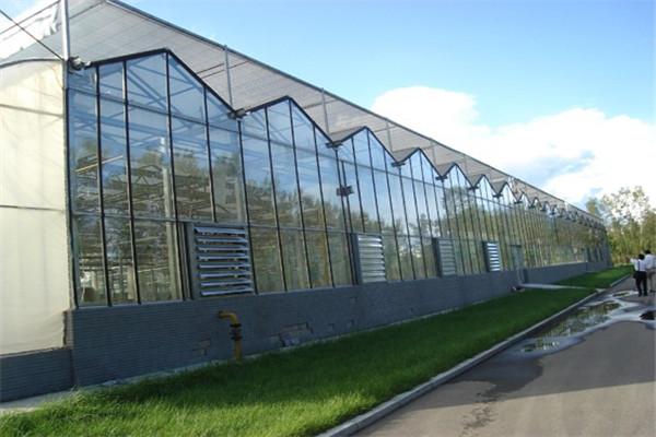 圣亚温室供应薄膜温室 连栋大棚咨询潍坊圣亚温室施工