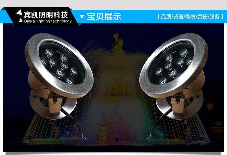 LED不锈钢水底灯户外景观LED水底灯公园广场水池水底灯示例图4