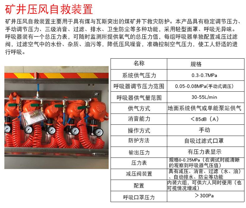 ZYJ-M6矿井压风自救装置 箱式6人矿井压风施救装置 不锈钢箱式自示例图2