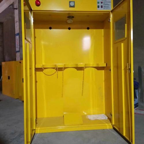 河南郑州气瓶柜 工业气瓶柜 WZLAB万致WZ-QPG 带智能报警器