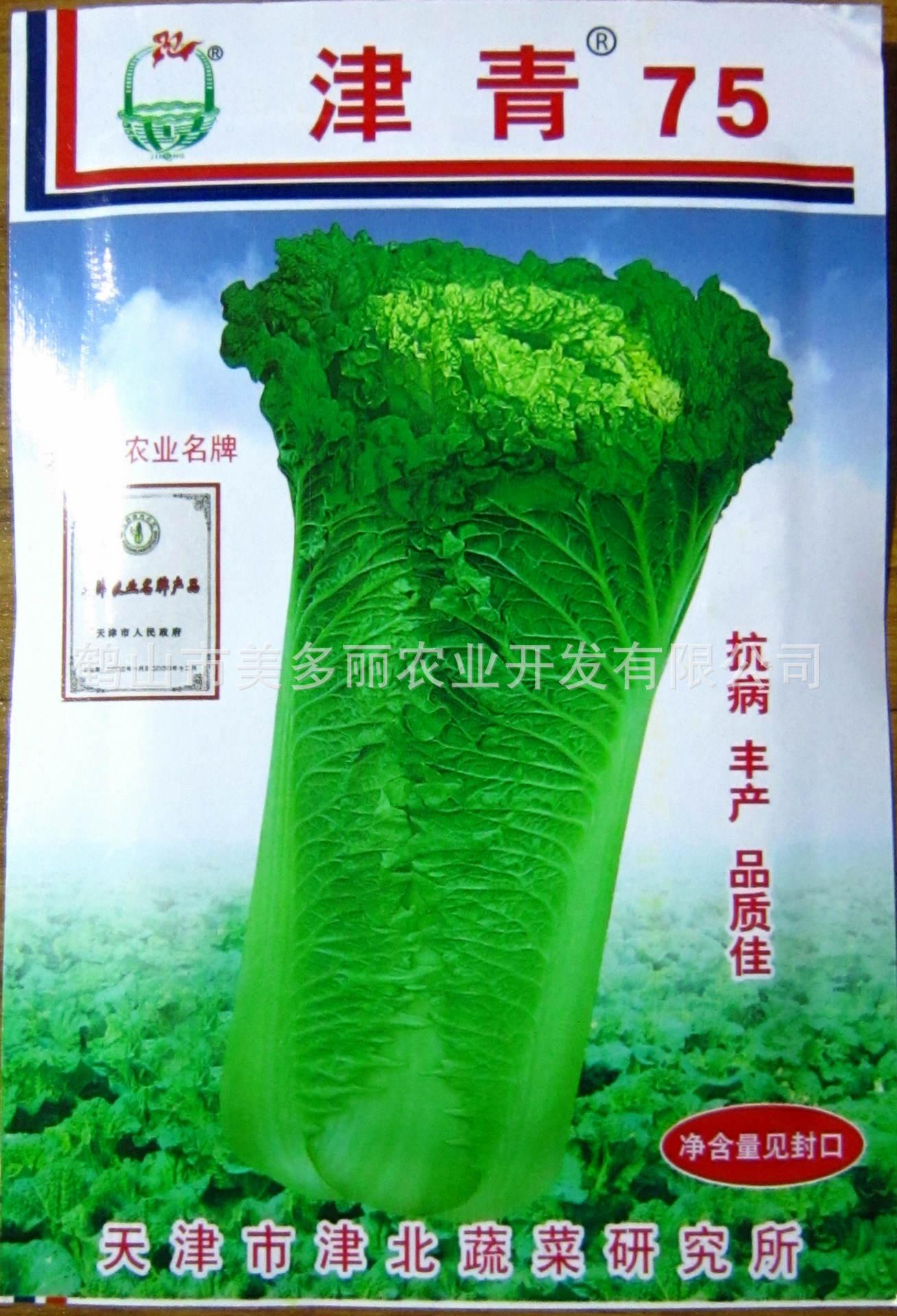 金青75号白菜种子抗病性强,产量高,品质好。