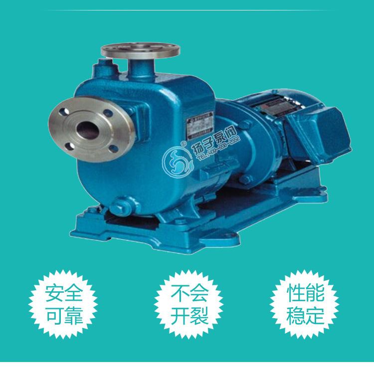 ZCQ不锈钢自吸磁力驱动泵 耐腐蚀磁力泵 304L/316L不锈钢磁力泵示例图4