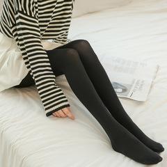 光腿加肥加大板肉色修身打底裤秋款抗起球锦纶肤色连裤袜保暖裤女示例图9