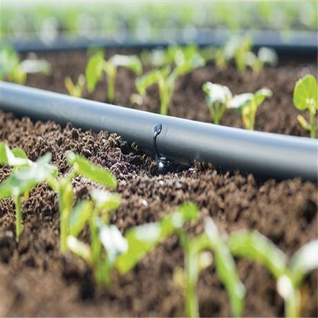 潤泉/runquan 萊蕪潤泉節水出售優質果樹滴灌管 規格齊全 滴灌帶批發價格