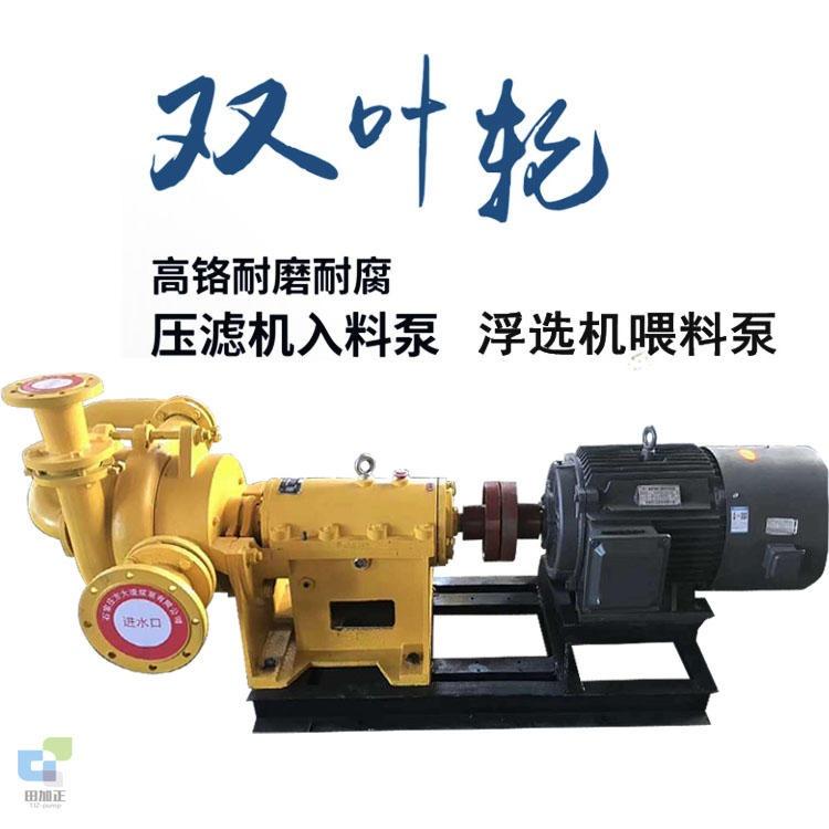 田加正 洗砂厂压滤机专用入料泵 ZJE ZJW压滤机给料泵 SYA型洗煤厂压滤机喂料泵