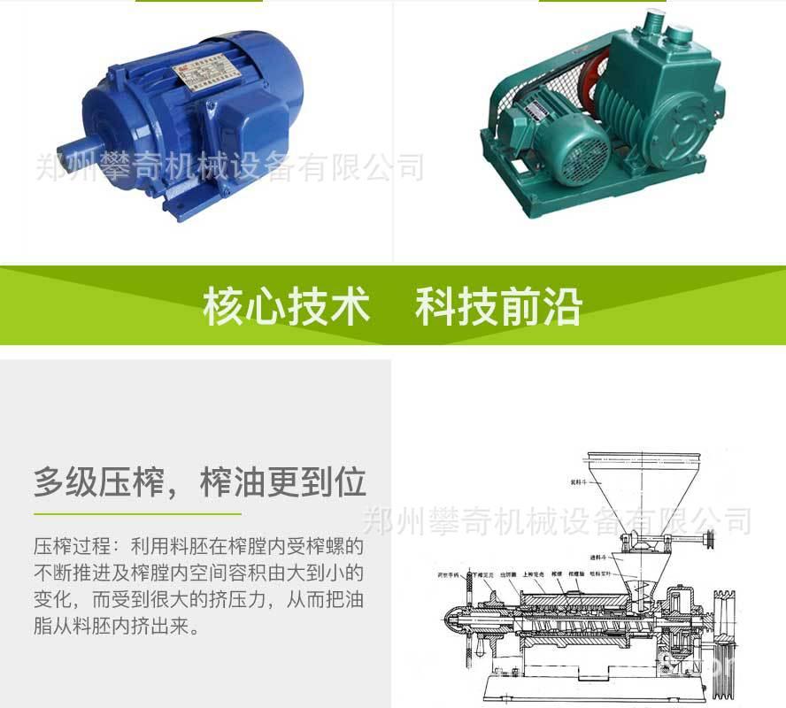 多功能螺旋榨油机全自动商用榨油机公司直供价格优示例图5
