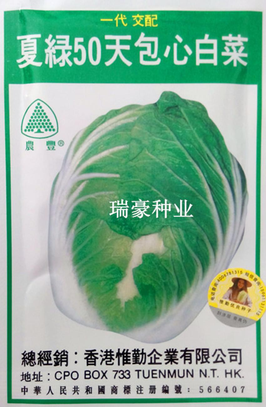 日本引进夏季绿色白菜种子50天