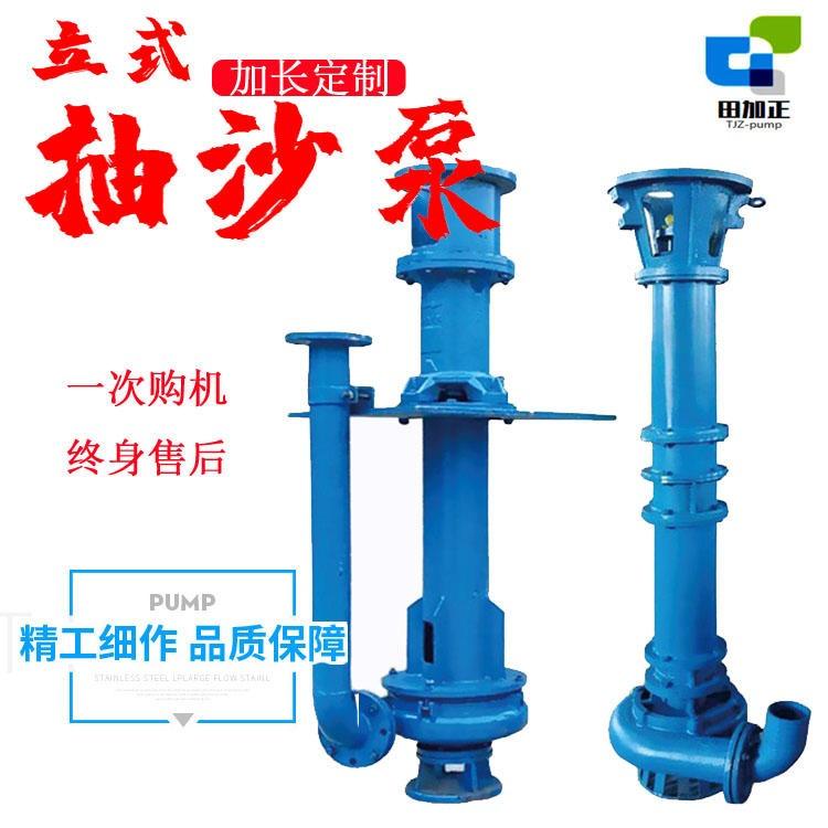 湖南立式抽沙泵,150NSL耐磨吸沙泵,22千瓦立式泥漿泵,旋流器水泵,脫水篩配套細沙回收泵