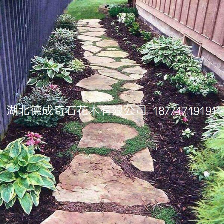 2018年汀步石景墙石批发庭院铺路石示例图9