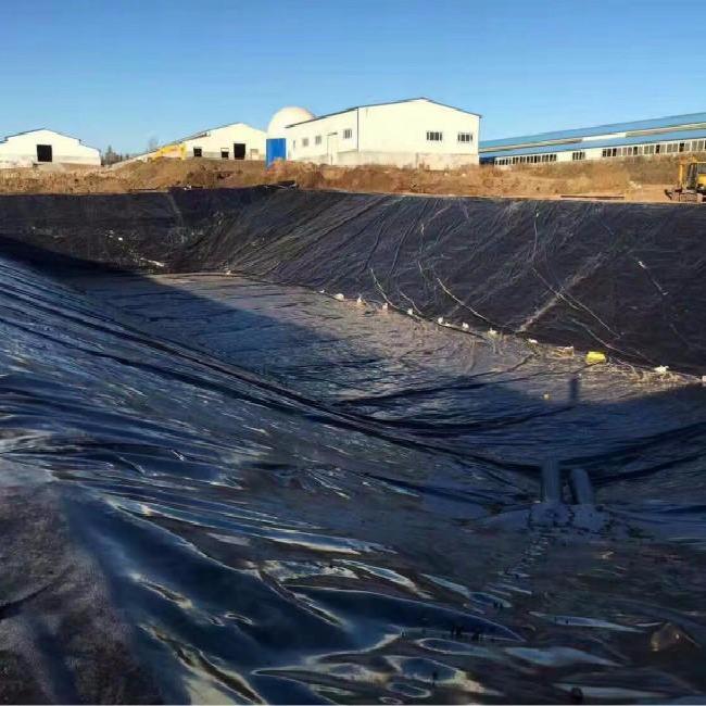 厂家定制 填埋池防渗透防水板/ 水产藕池养殖黑色土工膜 HDPE土工膜