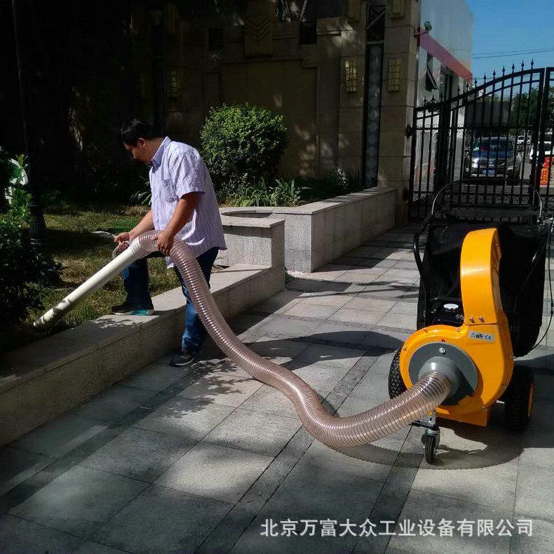 小型吸叶机 高效路面吸叶机 北京多功能吹吸叶机 落叶清扫设备示例图5