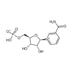 河北物丰  厂家直销   β-烟酰胺单核苷酸   β-烟酰胺单核苷酸厂家