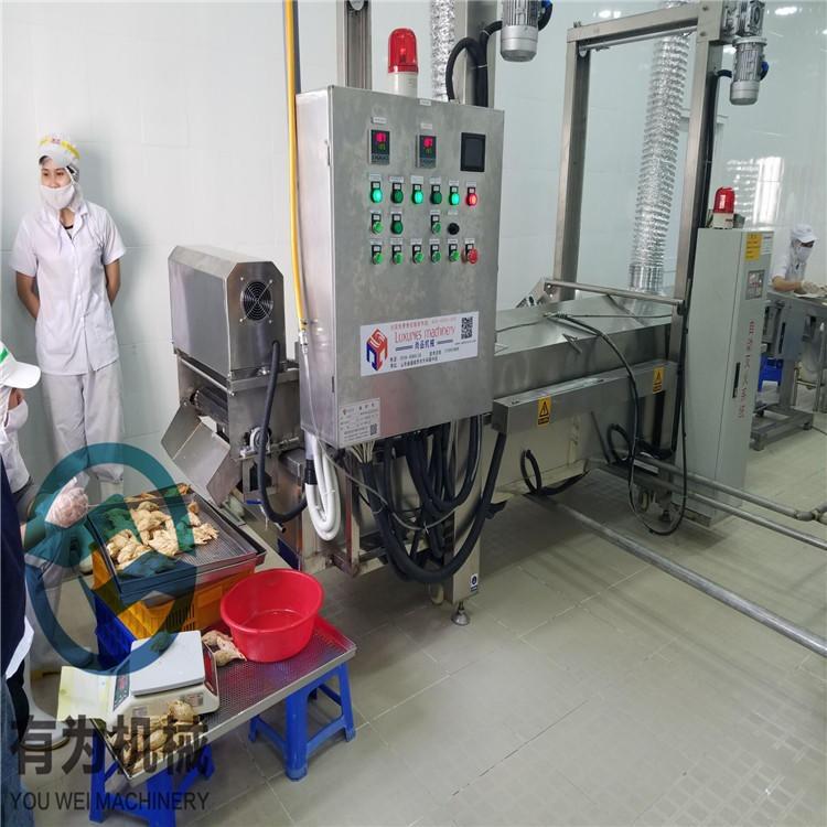 SR-300酥肉上浆机 有为机械马丁鱼片上浆裹浆机 定制四川鱼肉小酥肉上浆油炸生产线