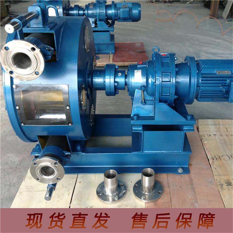 豫工機械 軟管泵 YGRGB100 廠家供應 板材加厚