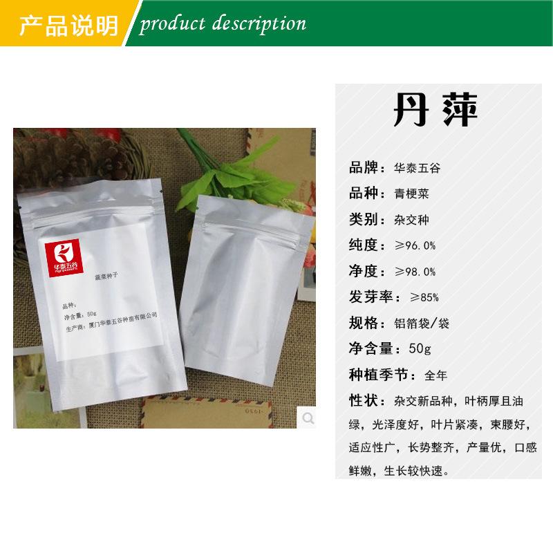 家庭油菜籽有机丹平绿茎蔬菜种子华泰粮食高产蔬菜种子供应5